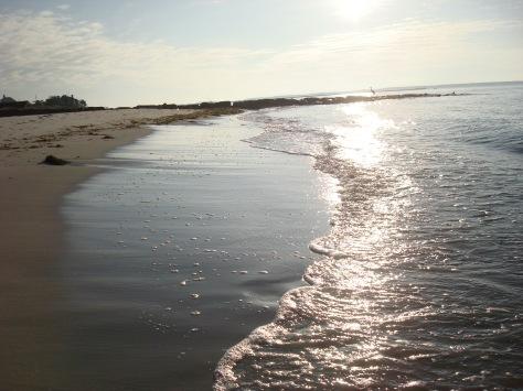 a beach near the zendo