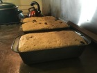 English muffin bread rising