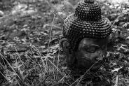 Buddhas head, Hyannis Zendo, Hyannis, MA, Nov. 15, 2020 (Photo by Charles Daly)